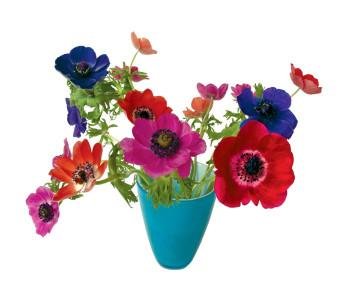 Raamdecoratie Flat Flowers raamstickers