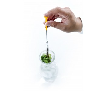 Flavor your water with lemon and rosemary in the Flavour Stick