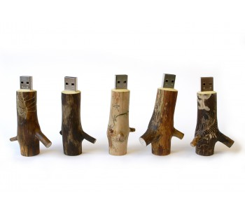 OOOMS Wooden USB Stick 16 GB
