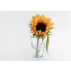 A big sunflower in a funny crushed cup glass