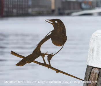 Metalbird Ekster metalen vogel silhouet bestel je bij shop.holland.com