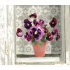 Raamsticker Flat Flowers paarse viooltjes koop je bij shop.holland.com