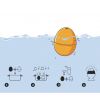Hoe kook je eenvoudig een goed eitje met de eierwerker PiepEi van Brutus Kookt?