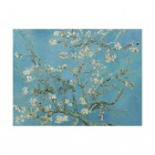 IXXI wall decoration Van Gogh's Almond Blossom