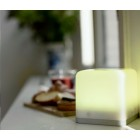 Lucis LED Lamp Alu & Lucite - Play with LED Light