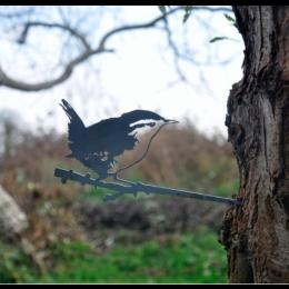 Metal bird Wren by Metalbird; a garden decoration