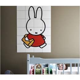 Miffy goes to schools with IXXI on your wall