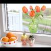 Flat flowers window sticker orange tulips