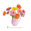 Flat Flowers window sticker Zinnia