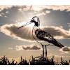 Metalbird godwits bird - nice gift for garden decoration