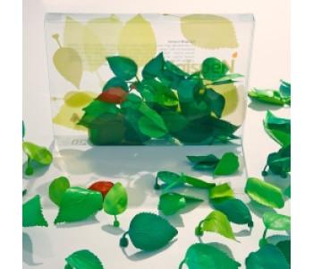 Gispen Leaves dekorative Magnete - Small