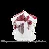 Hendrik' Faltvase mit Schnürsenkel und Design Tulpen