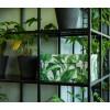 Aufbewahrungsbox Green Leaves von Dutch Design brand bei shop.holland.com